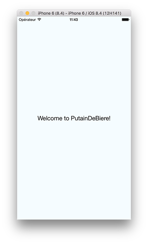 welcome PutainDeBiere preview
